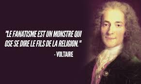 Top 15 Des Citations De Voltaire Qui Sont Toujours Malheureusement D