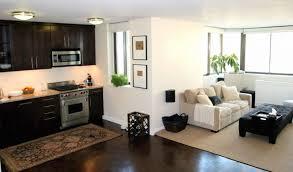 apartment kitchens designs. Kitchen Apartment Kitchens Designs Small Modern Remodel Design Inside E