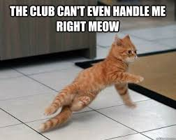The club can't even handle me right meow - Breakdancing cat ... via Relatably.com
