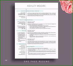 Award Winning Modern Resume Templates Free Download 2 Page Resume Templates Free Download Most Popular Modern