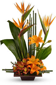 Teleflora's Exotic Grace Save 25% on this bouquet and many others with  coupon code TFMDAYOK1B2