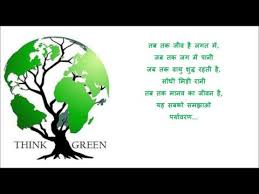 essay on is plastic bad for environment in hindi   essay for you  essay on is plastic bad for environment in hindi   image