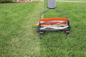 lawn mower photo