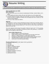Resume Objective Sample Format Objective Statements For Resume