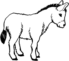 Small Picture Donkey Male Donkey Coloring Pages Color Horses Donkeys
