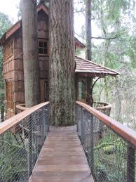 treehouse masters treehouse point. Tree House Magic Rosemary Ponnekanti The Burl At Treehouse Point Photo Inexpensive Home Decor Masters