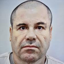 americans be like free el chapo. Inside Americans Be Like Free El Chapo