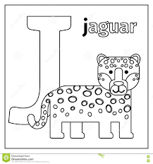 Jaguar Letter J Coloring Page Stock Vector Illustration Of
