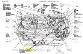 diagram of respiratory system frog ford 4 0 sohc engine explorer diagram