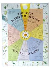 Bach Flower Remedies Chart Martin Pleasance Bach Flower Chart Laminated