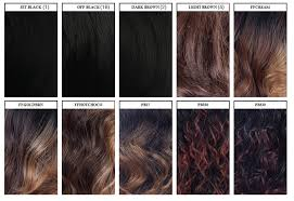 Freetress Color Chart Shake N Go Freetress Equal Lace Lace Wig Major