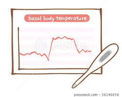 Thermometer Temperature Chart Basic Body Temperature Chart Ladies Thermometer Stock