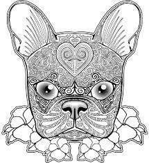 Small Picture Helpful image set of boston terrier coloring page suitable just