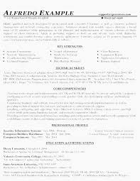 Samples Of Chronological Resumes Impressive Example Chronological Resume Examples Chronological Resume Resume