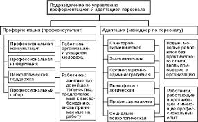 Реферат Способы адаптации к управленческим должностям  Способы адаптации к управленческим должностям