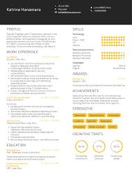 Amazon Systems Administrator Resume Sample Resume Samples