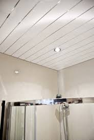 Vinyl Ceiling Panels Photo