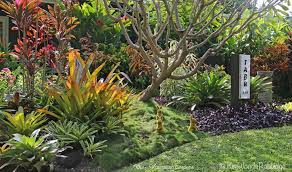 Small Picture Tabu Cairns tropical garden Landscape Streetscape