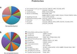 Figure 1 Pie Chart Representation Of Gene Ontology Go For