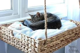 cat perch for window if you like this post be sure to pin it ill be cat perch