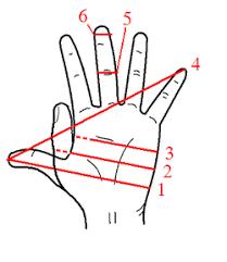 Hand Unit Wikipedia