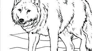 Free Wolf Coloring Pages Free Wolf Coloring Pages Free Wolf Coloring