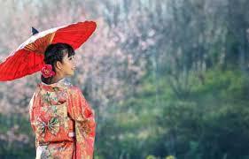"""Résultat de recherche d'images pour """"japon """""""