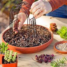 fill the terra cotta pot saucer with potting mix to 1 2 inch below the rim secure the miniature arbor about an inch inside the rim of the saucer