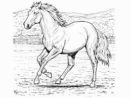 Realistic Horse Coloring Pages Only Coloring Pages