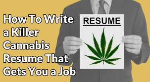Cannabis Resume Example Best Of How To Write A Great Resume For The Cannabis Industry