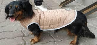 Куртки, <b>жилеты</b>, дождевики - <b>OSSO Fashion</b>