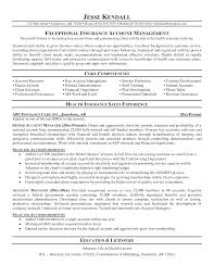 Resume For Insurance Account Manager Sidemcicek Com