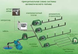 Картинки по запросу Система автоматического полива