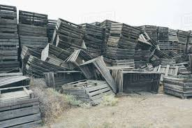 pile of old and discarded wooden fruit crates boxes for apple harvest royalty free