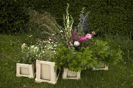 the bounty of june handfuls of of mint with long gres and the small