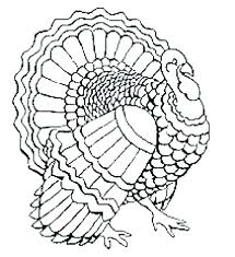Turkey Coloring Pages Free Printable Page Preschool Grand Pics