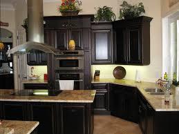 Dark Cabinets Dark Floors Sage Green Kitchen Cabinets With Black