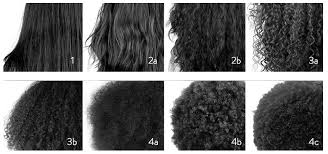 Curl Patterns New How To Figure Out Your Curl Type All Shades Covered