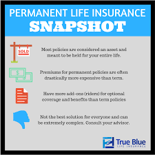 What Does Term Life Insurance Mean New Car Models 40 40 Amazing Level Term Life Insurance Quote