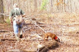 Blood Dog Tracking Services Russell Outdoor Guides