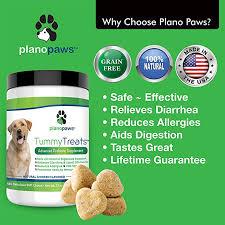 Amazon.com : Tummy Treats, Best Probiotics for Dogs, Helps Dog ...
