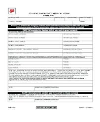 Info Card Template Emergency Contact Excel Child Information