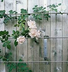 Small Picture 178 best Fence with Trellises images on Pinterest Trellis