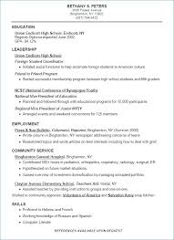 Us Resume Examples College Resume Examples For High School Seniors Enchanting College Resume Examples For High School Seniors