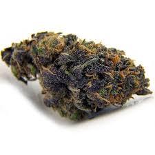 BUy Purple Kush online | ONLINE MEDICAL MJ STORE