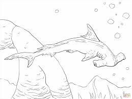 Small Picture Shark Coloring Page Shark Coloring Pages Free Sand Sharks