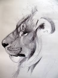 40 Beautiful And Realistic Animal Sketches For Your Inspiration