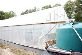 3 crucial reasons you should install a rainwater catch system in your greenhouse
