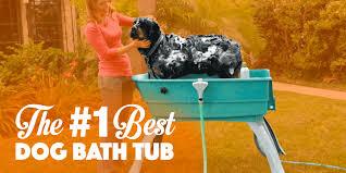 best dog bath tub booster bath