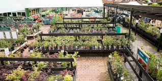 brookside garden centre the garden experts